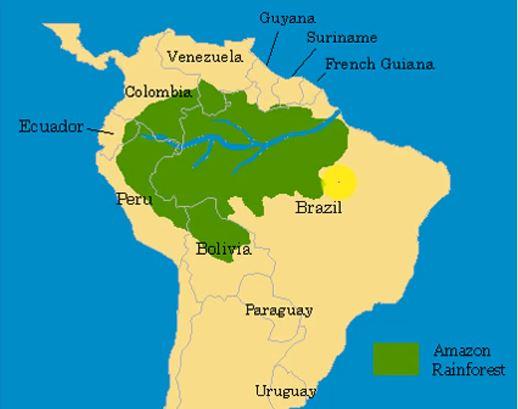 Countries under amazon rainforest