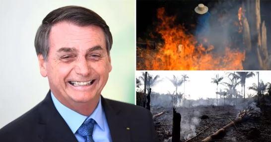 activists blame amazon forest fire